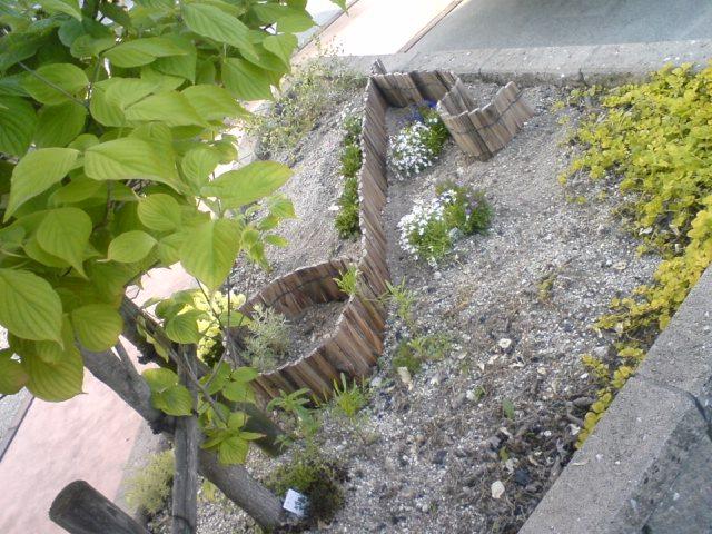 花壇   hiromi